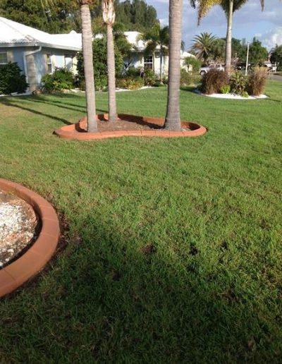 Sarasota Pavers_Florida Paving Company_trees