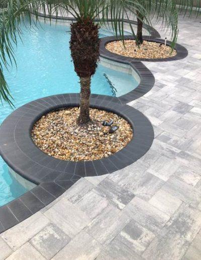 Sarasota Pavers_Florida Paving Company_Tree